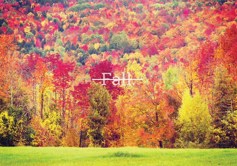 fall once had a different name everything after z by dictionary com