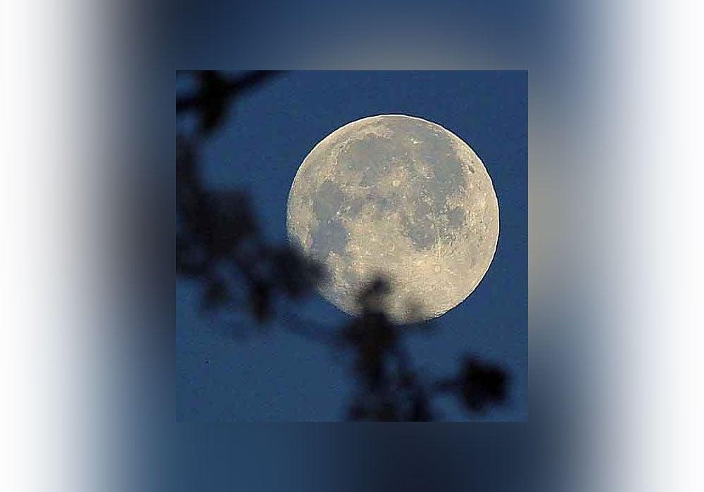 moon, moonshine, moonstruck, over the moon
