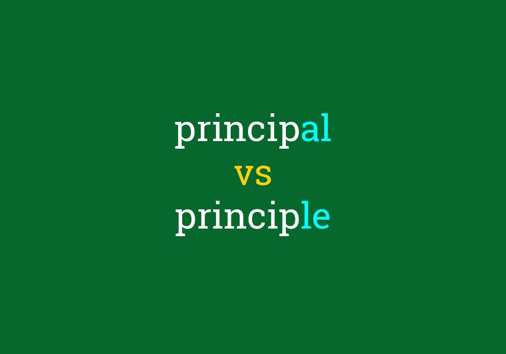Principal vs  Principle - Everything After Z by Dictionary com