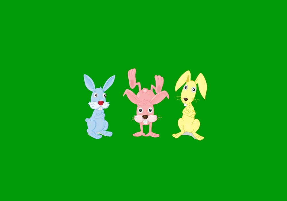 What's The Difference Between A Bunny, A Rabbit, And A Hare? –  Dictionary.com