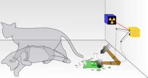 illustration depicting the paradox of Schrodinger's Cat, using a grey cat that is shown both alive and dead while a hammer smashes a vial of poison