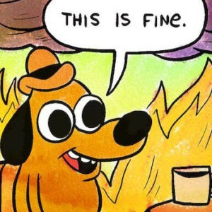 Image result for this is fine