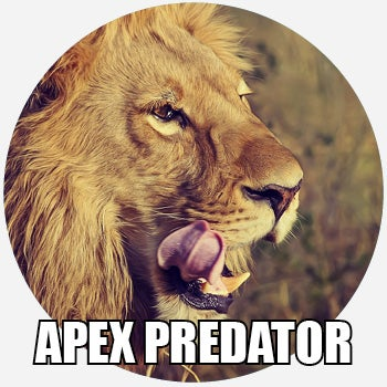 another word for apex