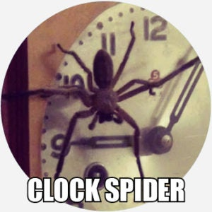clock spider
