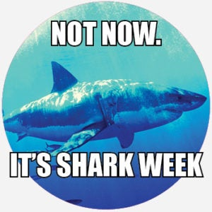 What Does Shark Week Mean? | Pop Culture by Dictionary com