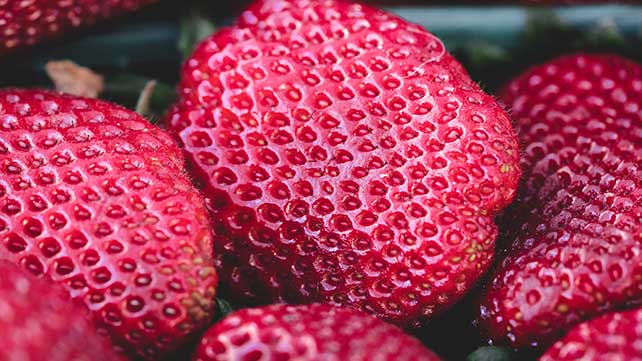 What Does Trypophobia Mean Tech Science By Dictionary Com