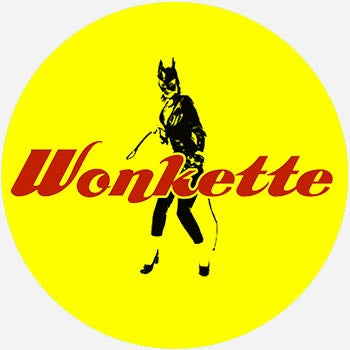 What Does Wonkette Mean? | Pop Culture by Dictionary com