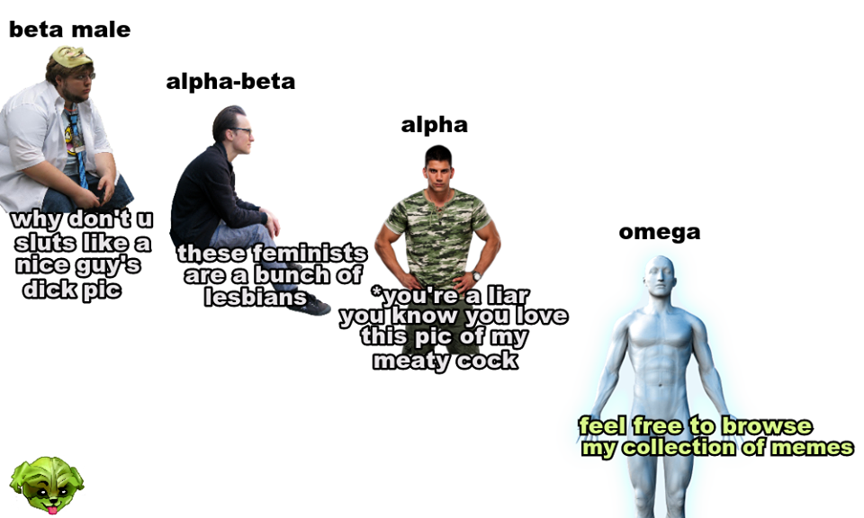 An in humans is what male alpha Social Basis