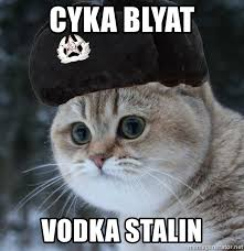 Cyka Blyat What Does Cyka Blyat Mean Translations By