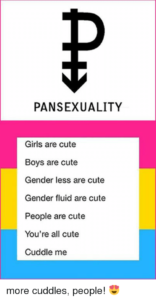 What Does pansexual Mean?   Gender & Sexuality by ...