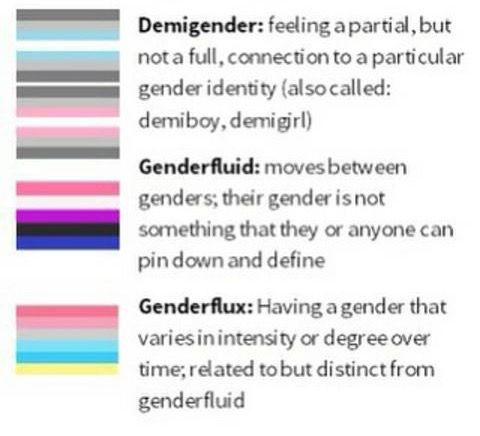 What Does demigirl Mean?   Gender & Sexuality by Dictionary com