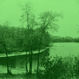 lake, shore, and trees with a light green filter and background.