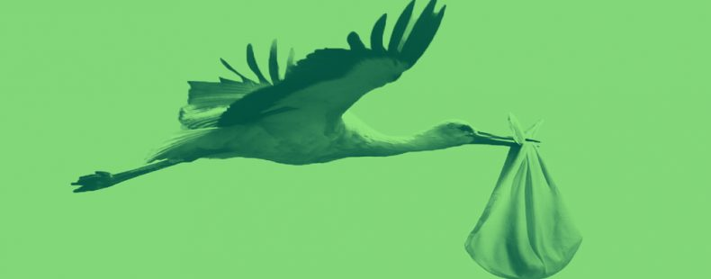 stork carrying a baby bundle, on a green background.